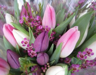 a-floral-gift-this-year-could-mean-more-than-you-might-imagine