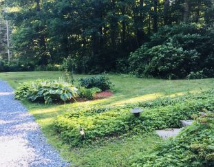 pattis-garden-before-and-after