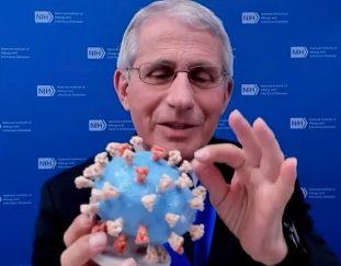 fauci-is-giving-his-coronavirus-model-to-the-smithsonian