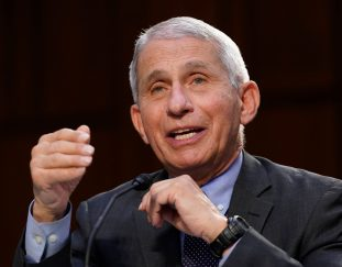 i-totally-disagree-with-you-fauci-tells-gop-senator-in-fiery-exchange-over-masks