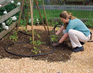 2-smart-ways-to-water-your-garden