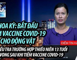 my-bat-dau-tiem-vaccine-covid-19-cho-dong-vat-le-quoc-khanh-my-dien-ra-nhu-chua-tung-co-dai-dich