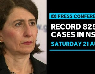 in-full-nsw-records-825-new-locally-acquired-cases-of-covid-19-abc-news