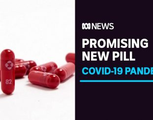 new-pill-could-cut-covid-risk-in-half-but-is-no-substitute-for-vaccines-abc-news