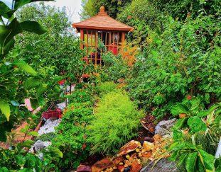 doriss-california-garden-finegardening