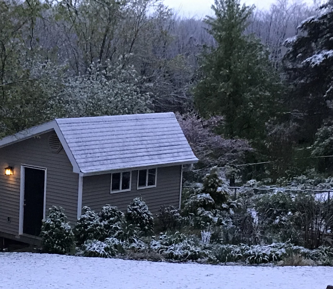 late-spring-snow-finegardening