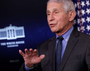 fauci-says-covid-infections-are-decreasing-in-all-50-states