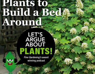 episode-87-plants-to-build-a-bed-around