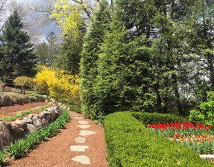 clares-new-jersey-garden-finegardening