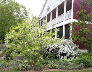 charlenes-pennsylvania-garden-finegardening