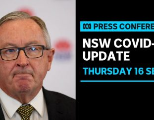 in-full-nsw-records-1351-new-cases-and-12-deaths-from-covid-19-abc-news