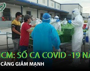 tp-ho-chi-minh-so-benh-nhan-covid-19-nang-ngay-cang-giam-manh-tp_ho_chi_minh-covid_19